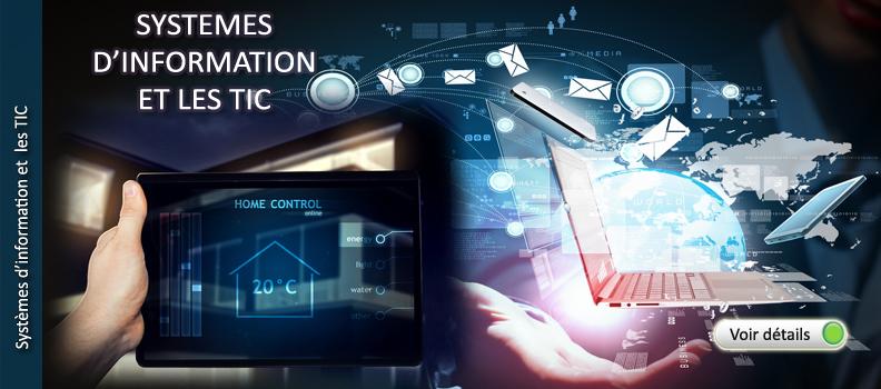 Systèmes d'information et les TIC